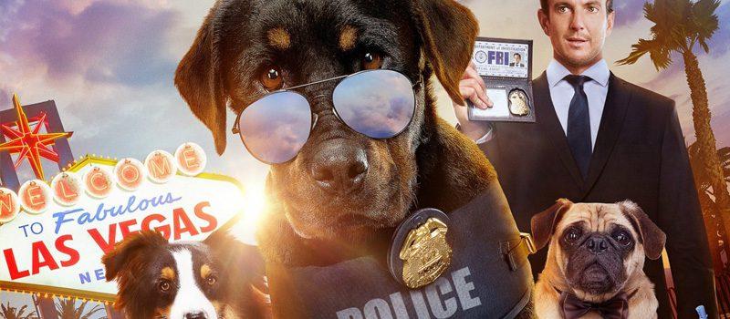 mostrar cães novos no netflix setembro de 2021