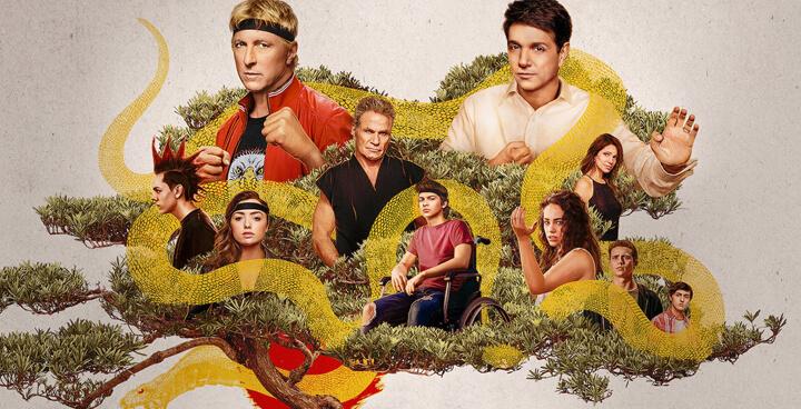 As 50 principais séries de TV de cobra kai na netflix